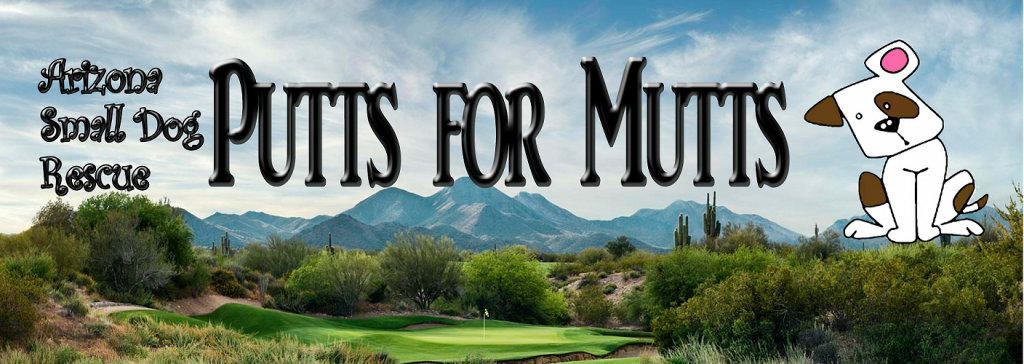 minigolf for good causes