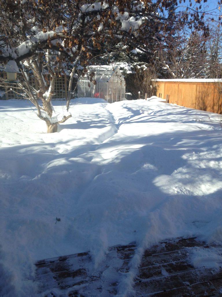 February in Canada